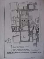 Planta basílica